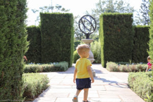 Toddler walks through the Botanical Gardens where the landscaping is immaculate.