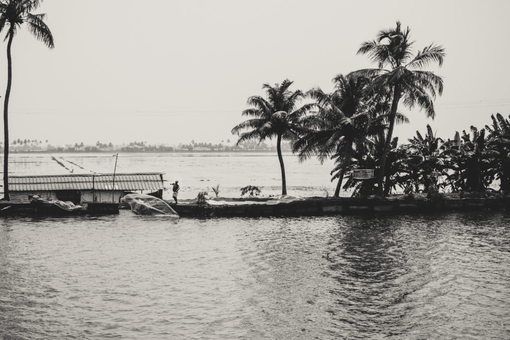 Man fishing on keralas backwaters