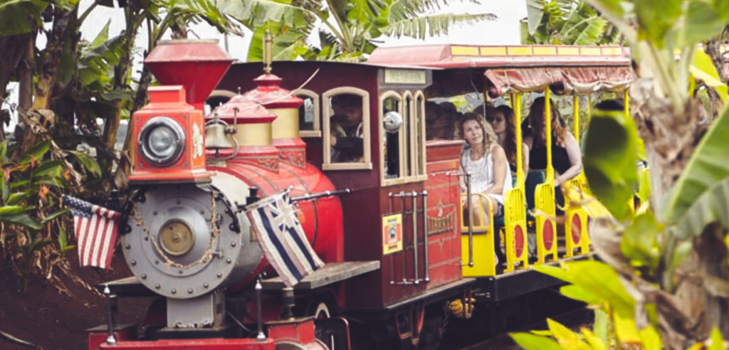 Riding the train at the Dole planation in Hawaii. Kid friendly things to do in Oahu.