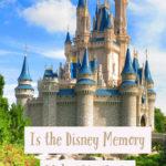 Disney world castle - not taken by the memory maker photographers.