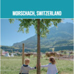 Twin toddlers lean against a tree in Morschach, Switzerland in front of the resort farm