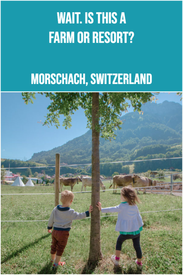 Is this the best resort for families? If you love combining nature with resort amenities it just might be. Find out what makes this Swiss Resort so special! .......................................... #familytravel #kidfriendlyhotel #placestostaywithkids #morschach #switzerland #travelwithkids Places to stay with kids. Kid-friendly hotels. Places to go with kids.