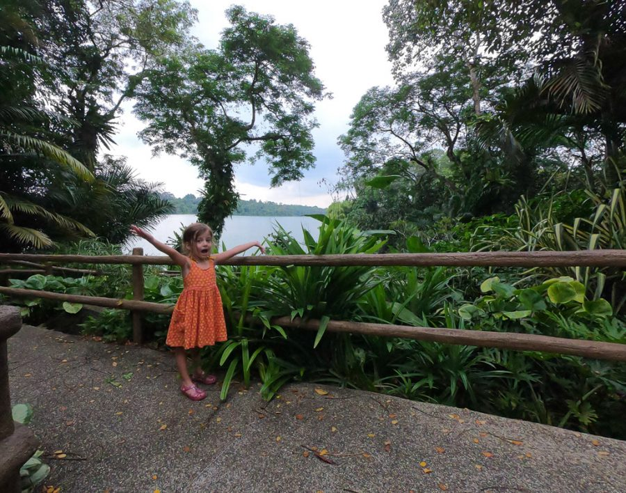 Toddler poses in a green area of Singapore Zoo