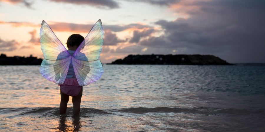Child dresses up like a fairy
