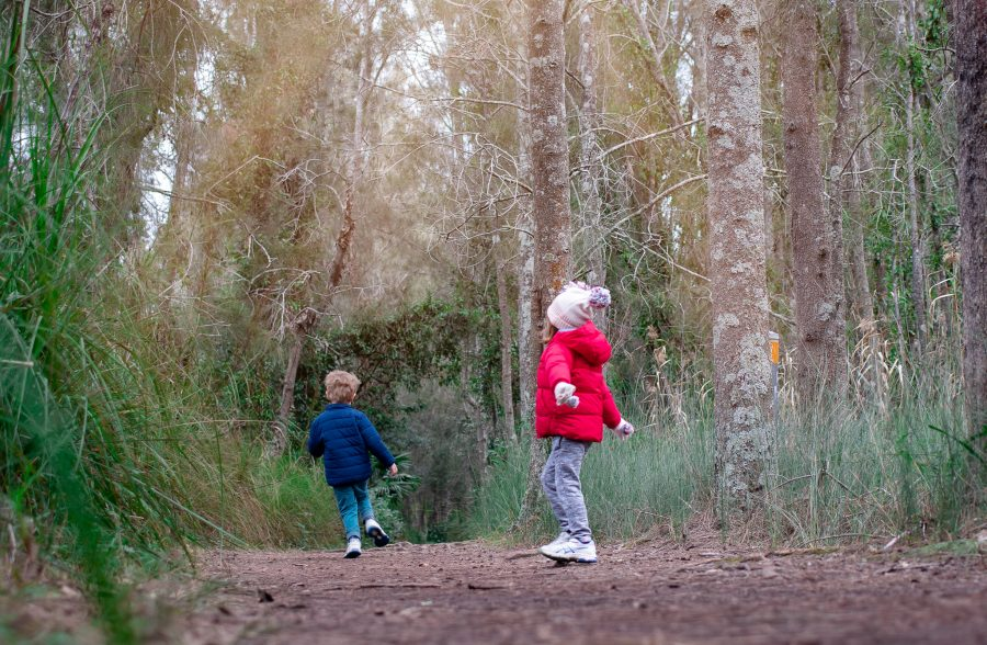 Two children are out on a nature trail to find supplies for their homemade bookmarks